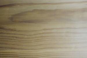 Amerikaans Grenen houttekening